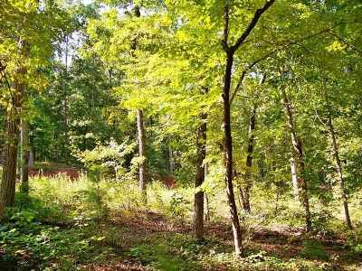 Residential Lots & Land For Sale: 128 Julie Way