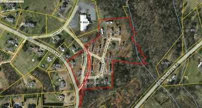 Easley Multi Family Home For Sale: Fish Camp Road