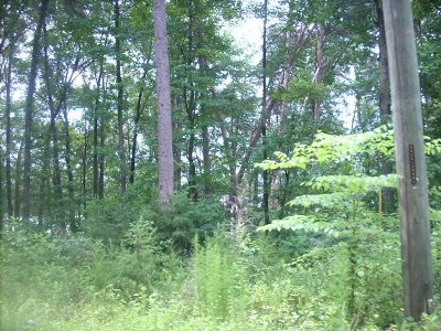 Townville Residential Lots & Land For Sale: Lot 1 Meredith Lake Rd