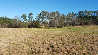 Townille, Townville Residential Lots & Land For Sale: Lot 9 Keowee Club Road