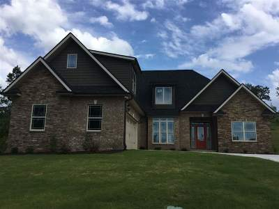 Anderson Single Family Home For Sale: 116 Siena Drive