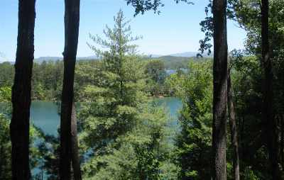 Central, Clemson, Salem, Seneca, Walhalla, West Union Residential Lots & Land For Sale: 731 Barberry Court
