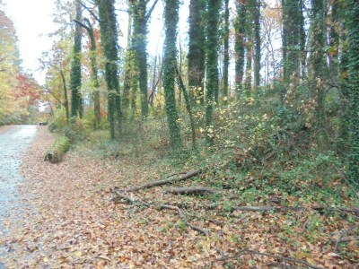 Allen Hill Wood Residential Lots & Land For Sale: Brighton Road