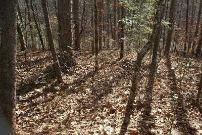 keowee key Residential Lots & Land For Sale: 401 Long Reach Drive