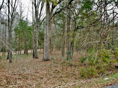 Pritchard Creek Residential Lots & Land For Sale: Lot 6 Nabors Drive