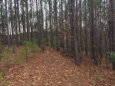 Residential Lots & Land For Sale: 620 Top Ridge Drive