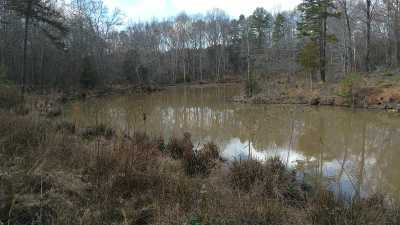 Anderson County Residential Lots & Land For Sale: N Major Rd