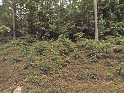 Westminster SC Residential Lots & Land For Sale: $2,500