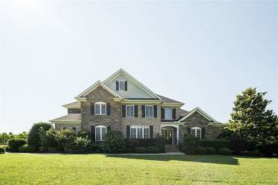 Williamston Single Family Home For Sale: 209 Chestnut Springs Way