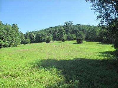 Oconee County, Pickens County, Anderson County Residential Lots & Land For Sale: 585 Jenkins Bridge Road