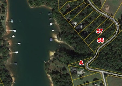 Townville Residential Lots & Land For Sale: 301,303 Lakefront Rd