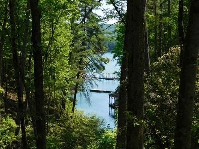 Residential Lots & Land Contract-Take Back-Ups: Lot 47 Turtlehead Drive