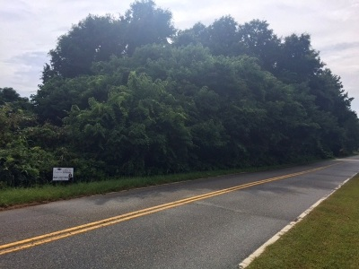 Residential Lots & Land For Sale: 9.54 Ac Dobbins Bridge Rd.