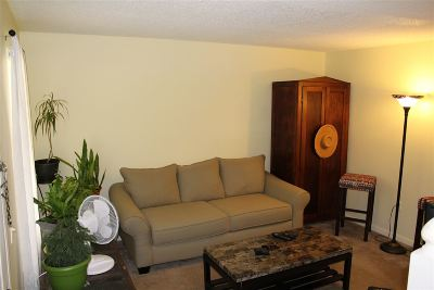 Clemson Condo For Sale: 250 Elm St
