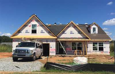 Athens, Anderson Single Family Home For Sale: 1074 Stoneham Circle