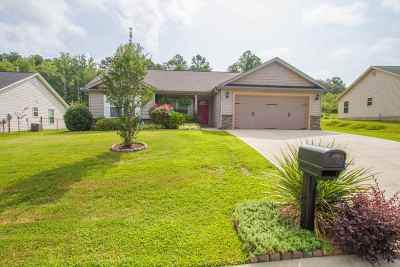 Athens, Anderson Single Family Home For Sale: 160 Mediterranean Ave