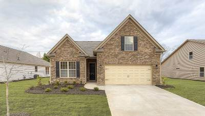 Athens, Anderson Single Family Home For Sale: 136 Golden Eagle Lane
