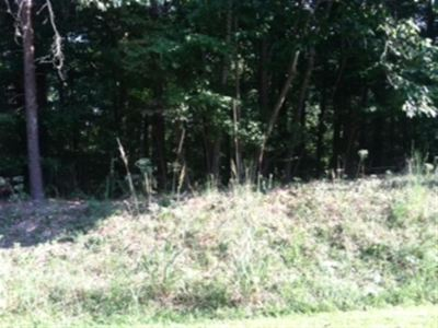Chickasaw Point Residential Lots & Land Sold: Laurel Drive