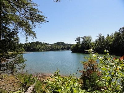 Residential Lots & Land For Sale: 174 Ellenburg Creek Road