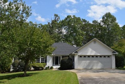 Anderson Single Family Home For Sale: 1128 Cartee Road