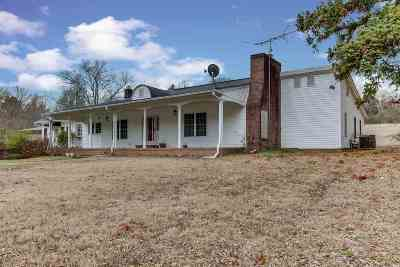 Williamston Single Family Home For Sale: 508 Mountain View Road