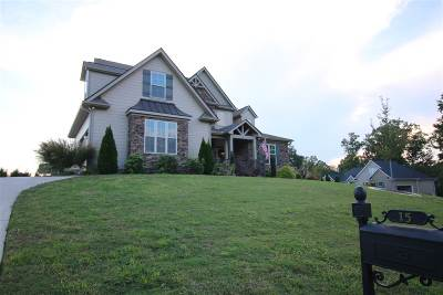 Greer Single Family Home For Sale: 15 Hunters Landing Drive