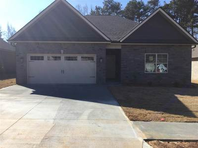 Anderson Single Family Home For Sale: 206 Friend Street