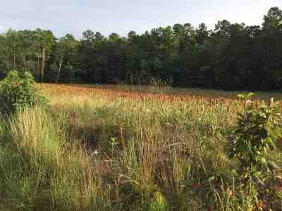 Anderson Residential Lots & Land For Sale: Shirley Store Rd