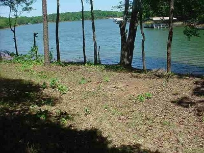 Townille, Townville Residential Lots & Land For Sale: Lot E McAlister Circle