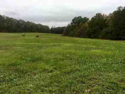 Anderson County Residential Lots & Land For Sale: 100 Ac Broadway School Road