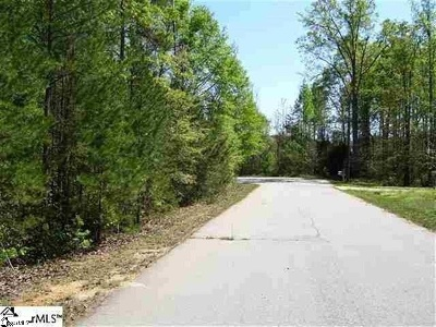 Townville Residential Lots & Land For Sale: 125 Horseshoe Drive