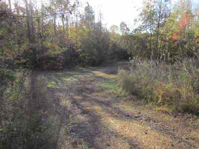 Starr Residential Lots & Land For Sale: 148 Lone Star Lane