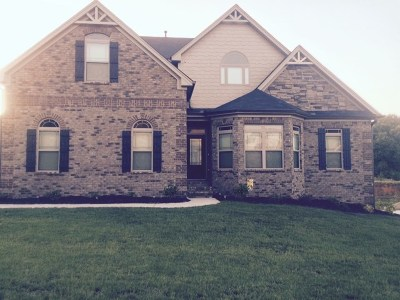 Simpsonville Single Family Home For Sale: 10 Stonoview Ct