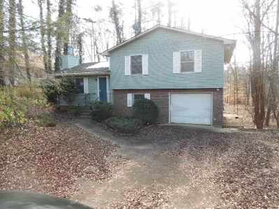 Chickasaw Point Single Family Home For Sale: 1003 Chickasaw Drive
