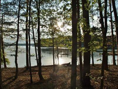Residential Lots & Land For Sale: 00 Sugar Creek Haven Way