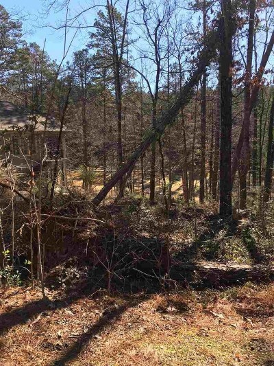 keowee key Residential Lots & Land For Sale: 335 Long Reach