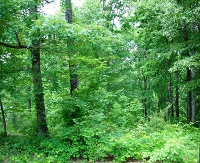 Fair Play Residential Lots & Land For Sale: Lot 034 Overlook Drive