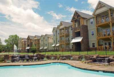 Clemson Condo For Sale: 203 Kelly Rd #414
