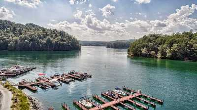 The Reserve At Lake Keowee, Cliffs At Keowee, Cliffs At Keowee Falls North, Cliffs At Keowee Falls South, Cliffs At Keowee Springs, Cliffs At Keowee Vineyards Townhouse For Sale: 117b Portside Court