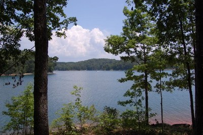 Central, Clemson, Salem, Seneca, Walhalla, West Union Residential Lots & Land For Sale: 822 Rockcrest Way