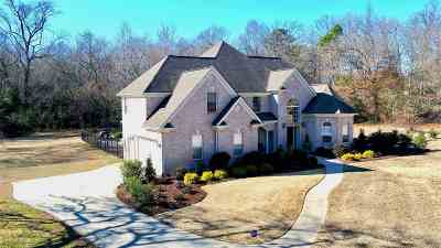 Belton Single Family Home For Sale: 151 Steeplechase