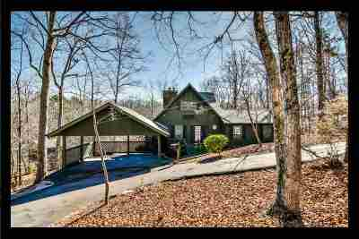 Single Family Home For Sale: 103 Chippewa Drive