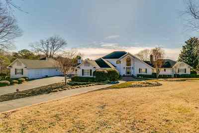 Easley Single Family Home For Sale: 131 Willow Lake Court
