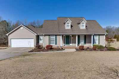 Pickens County Single Family Home For Sale: 158 W Old Pendleton Road
