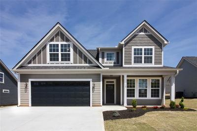 Anderson Single Family Home For Sale: 10 Barron Glenn Way