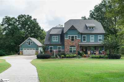 Fountain Inn Single Family Home For Sale: 769 Hillside Church Road