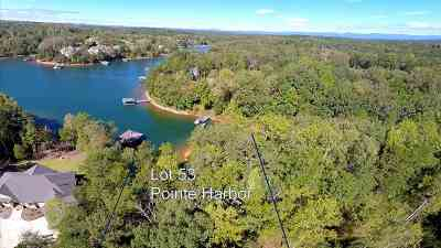 Residential Lots & Land For Sale: Lot 53 Pointe Harbor