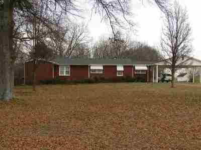 Pelzer Single Family Home For Sale: 155 Lockaby Road