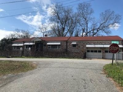 Williamston Single Family Home For Sale: 17 Jehue Street