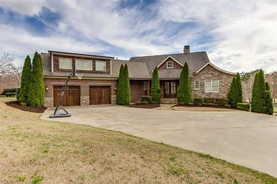 Easley Single Family Home For Sale: 220 Pine Ridge Drive